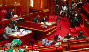 Explainer: Why the National Assembly's vote of no-confidence on the IGP means nothing