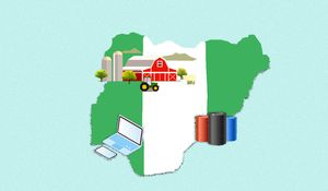 What is the Nigerian economy?