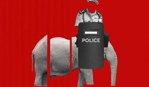 Police reform: Ideas for Nigeria
