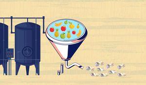 The business model behind ReelFruit's $3 million idea
