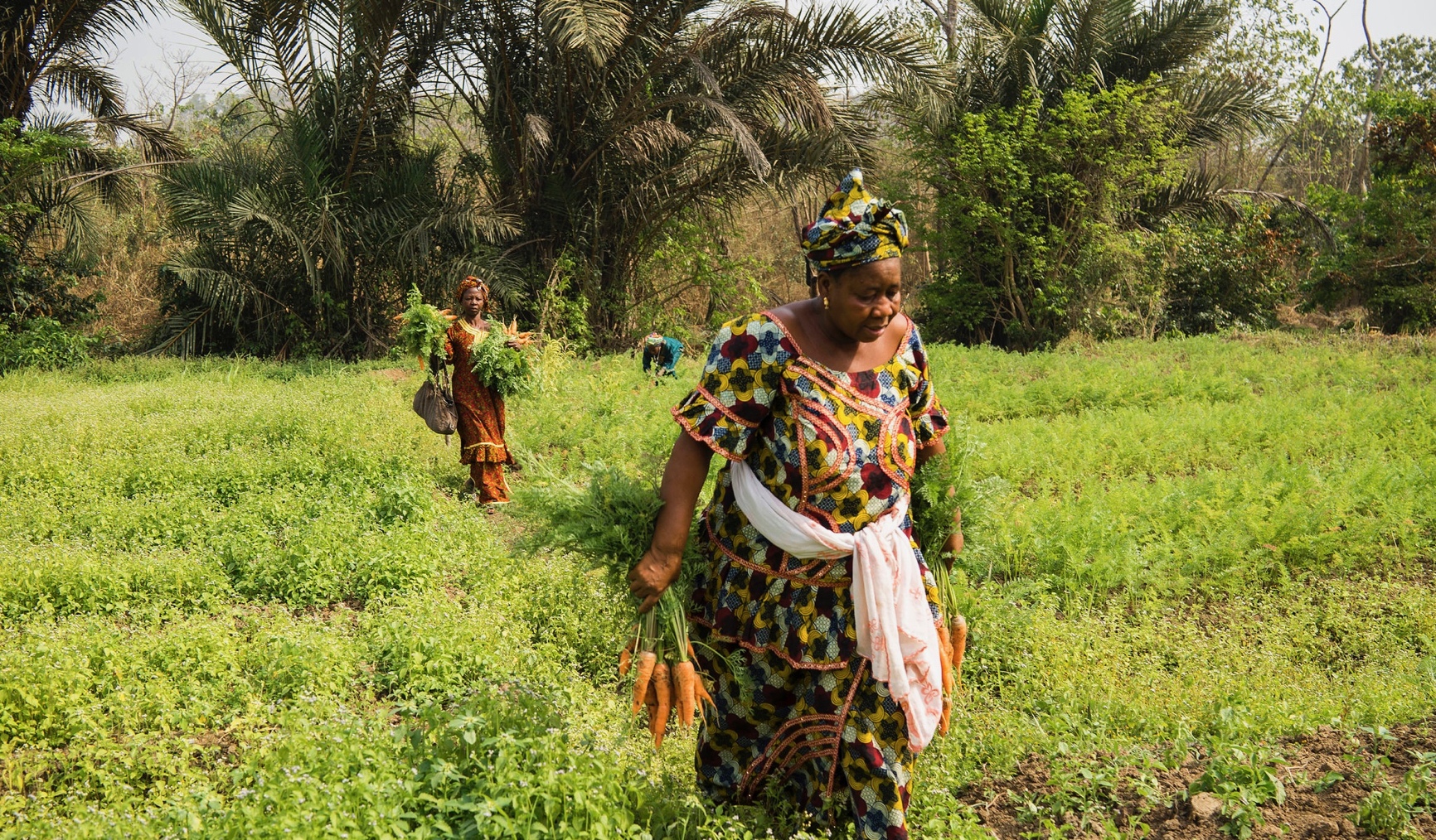 The odds against Nigerian women in agriculture
