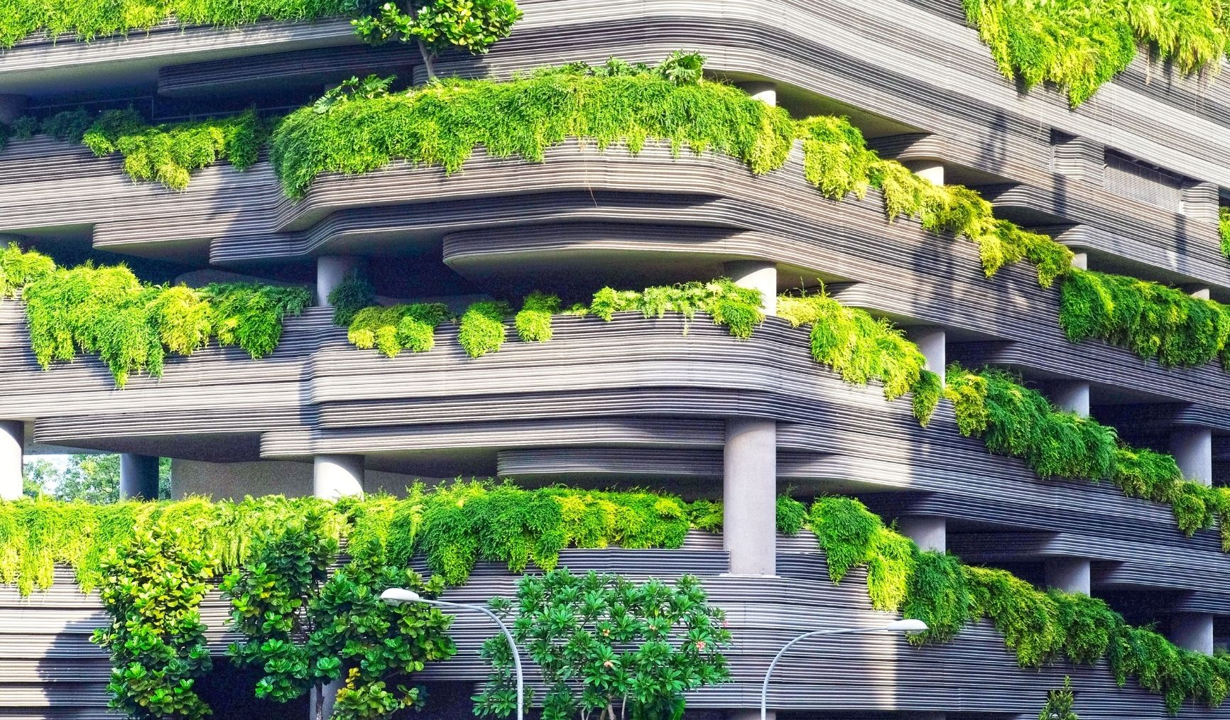 Five ways to provide $122 billion funding for Nigeria's green sector