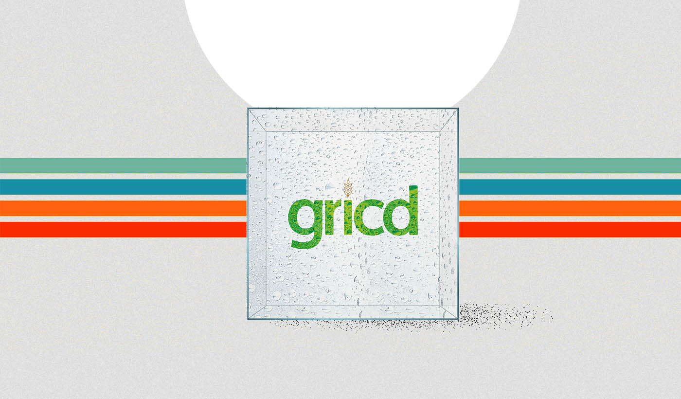 The story of Gricd: A storage solution company