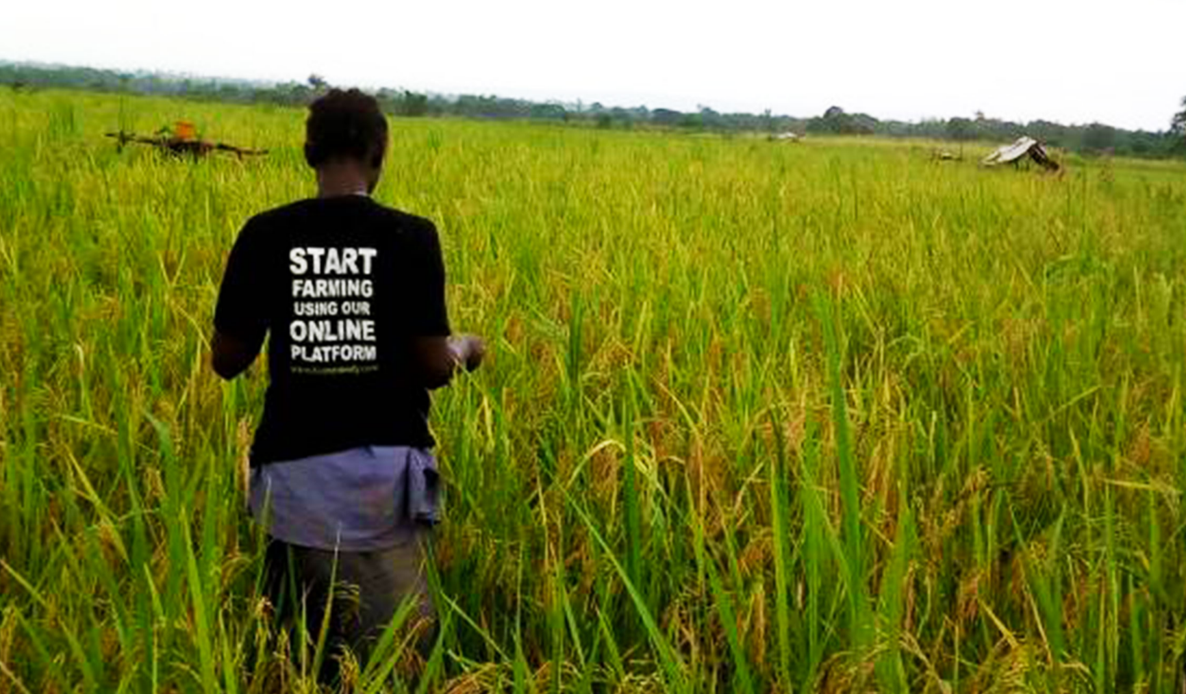 How Farmcrowdy is changing the scale of Nigerian food production